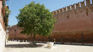 Arsenale – tour: Off the beaten path © When in Venice - Registered tour guides